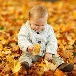 Hajdúszoboszlói ősz