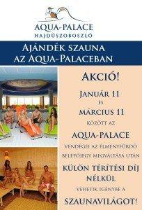 Aqua-Palace szauna