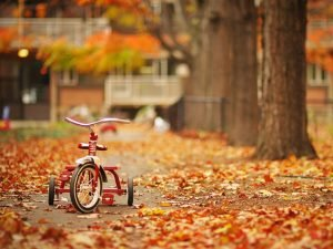 ősz_3